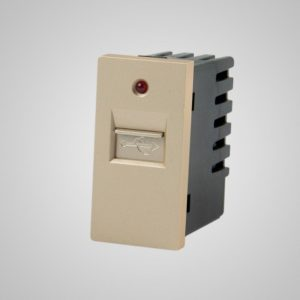 USB lādētājs-slots, 220VAC 1A, zelts, 1/2